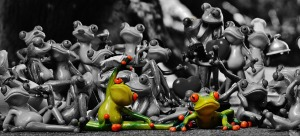 frogs-1413787_1280